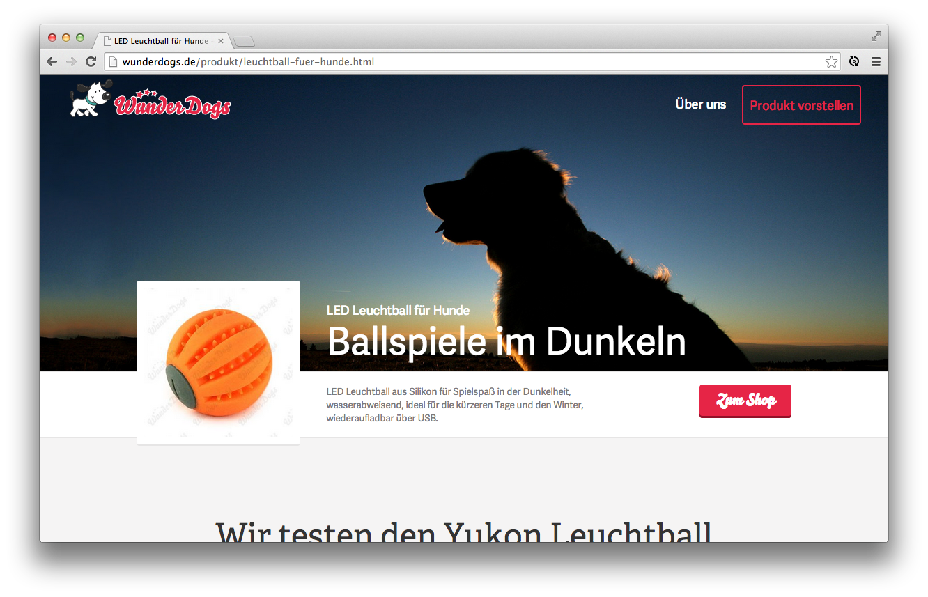 wunderdogs-website